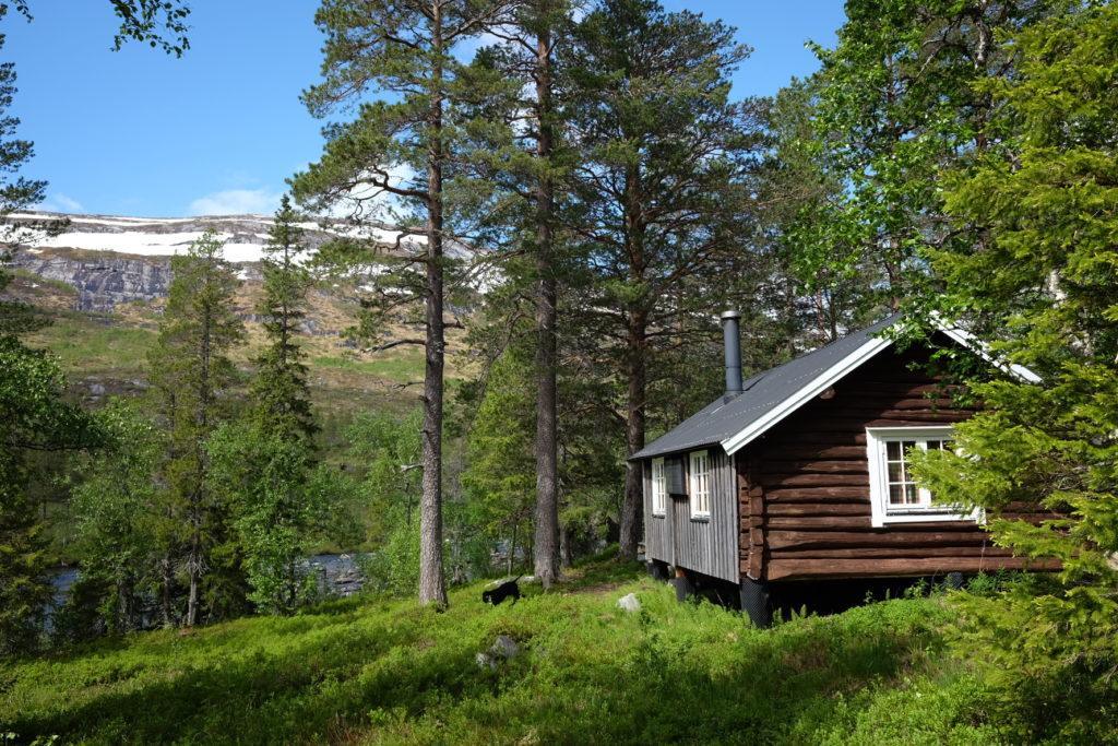 Outdoor Paradies und Wildnisgefühl in Namsskogan